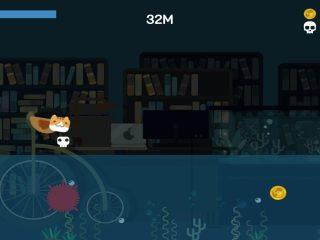 catfish4